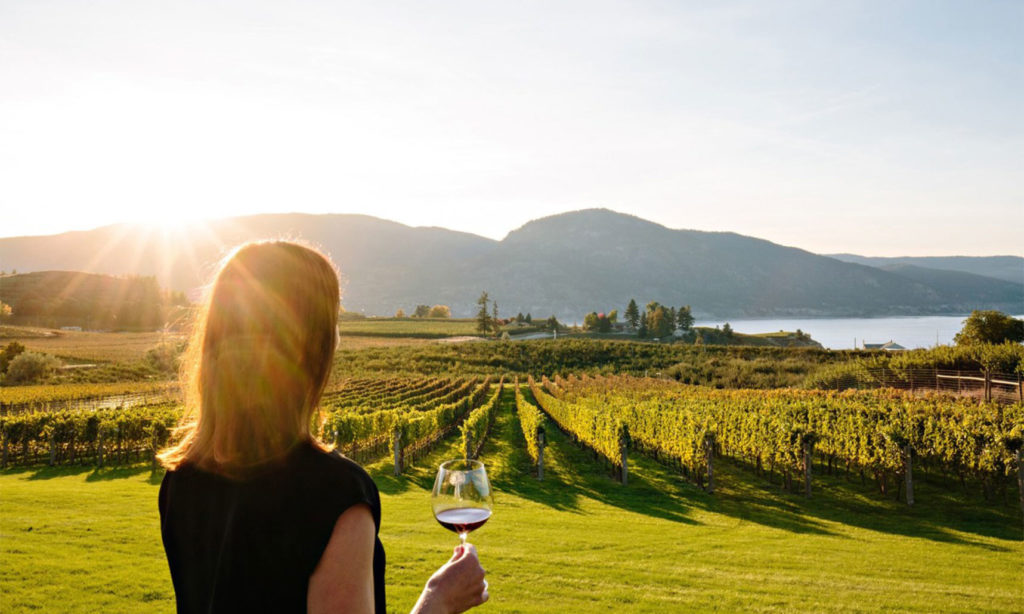 a flight of BC wines chosen by Tania